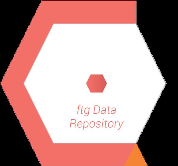 FTG Hexagon 1
