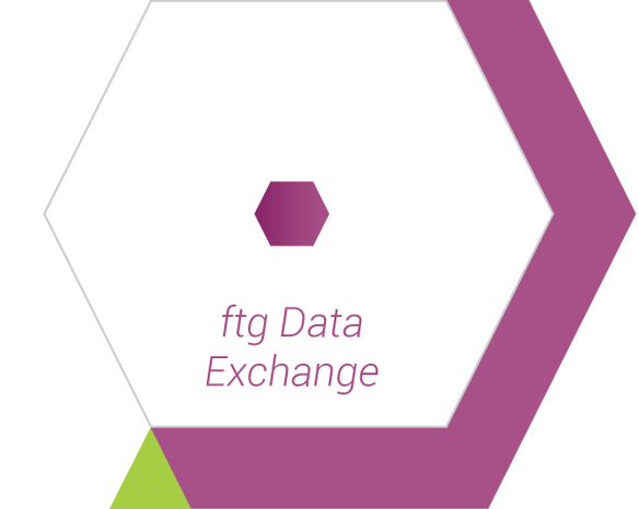 FTG Hexagon 6