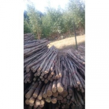 Tadpoles Sales - Creosote - Fencing - Lathes -